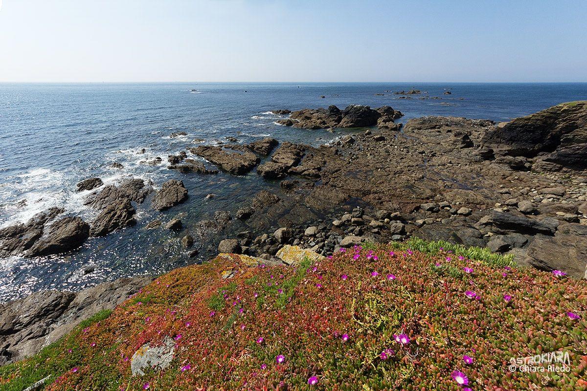 Cliffs Lizard Peninsula...