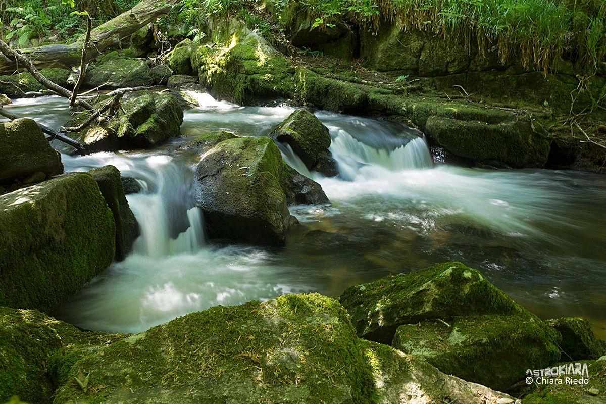 Golitha Falls...