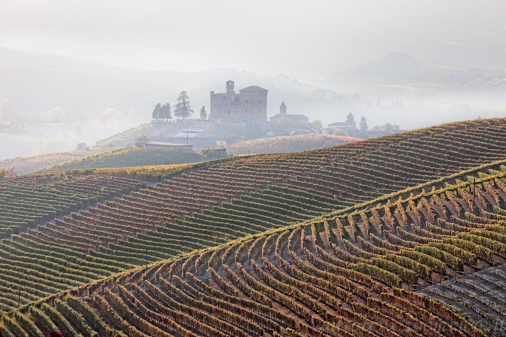 Castle grinzane seen from Diano d'Alba...