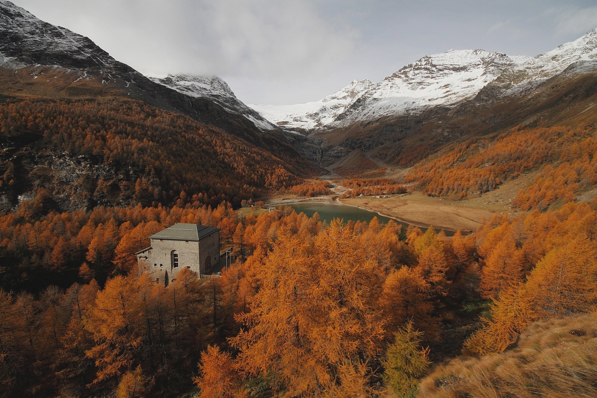 Colori autunnali dal Trenino Del Bernina...