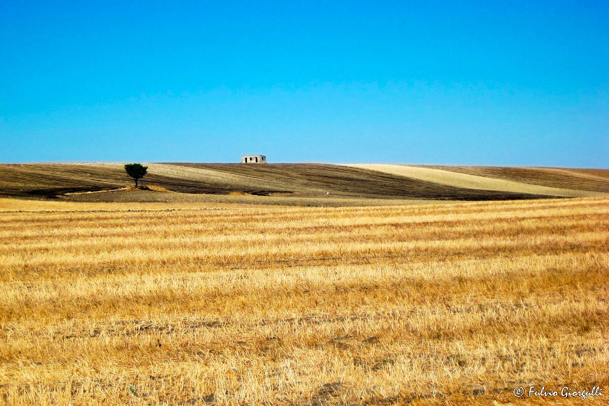 Matera - Rural Landscape...