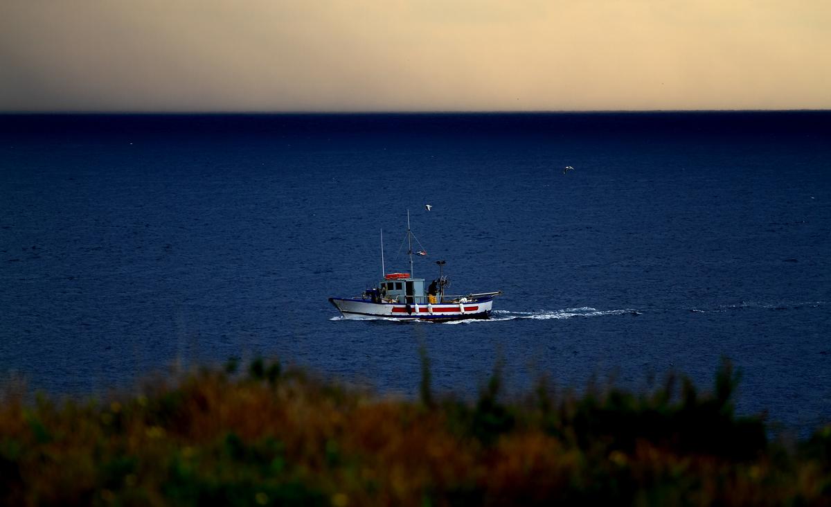 The return of the fishermen...