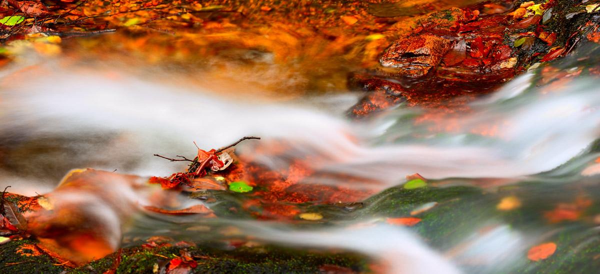 Danza dell'acqua...