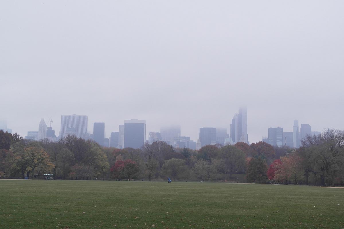 central park fog...
