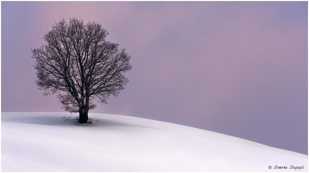 L'inverno mi addolcisce...
