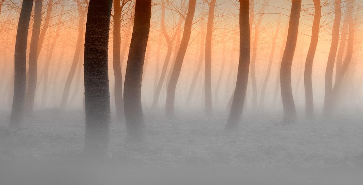 Al tramonto è nebbia...