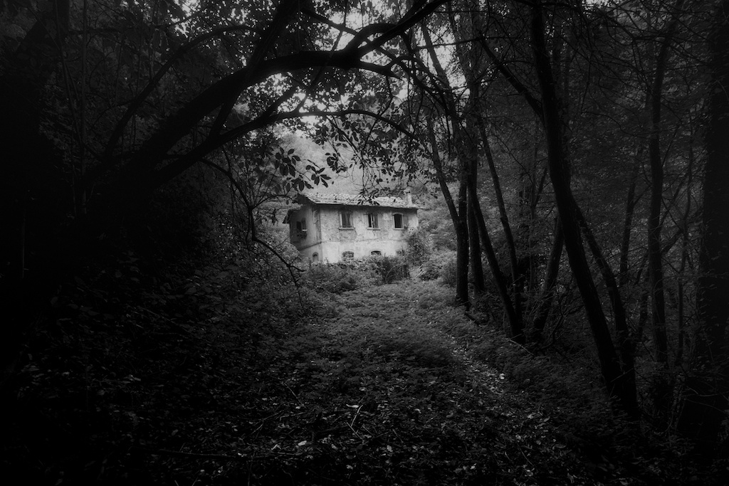 House in the woods...
