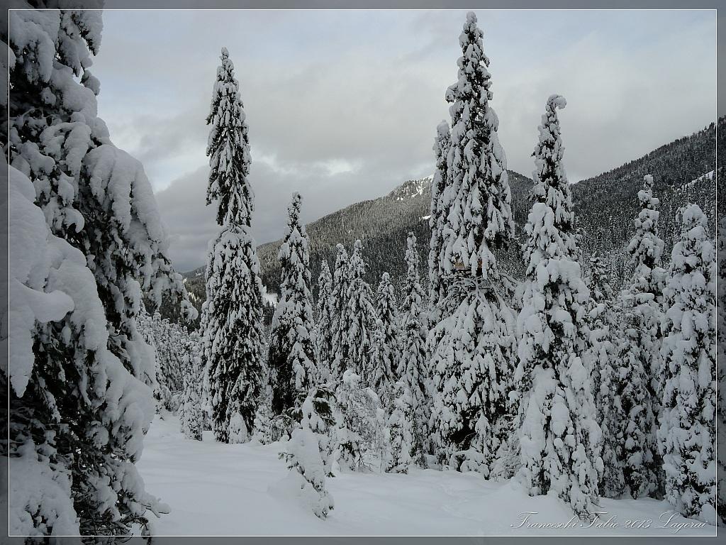 Snow end of December!...
