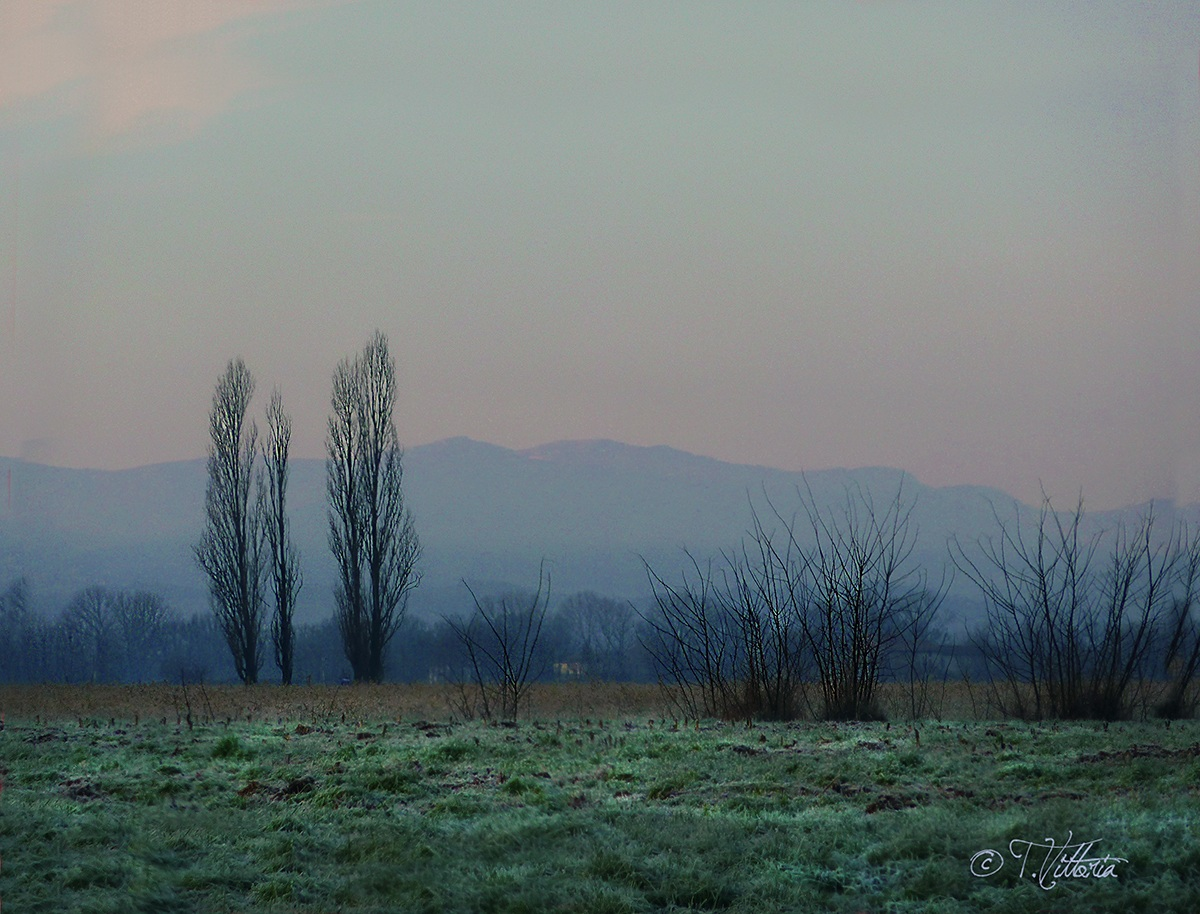 Frost in the early morning...