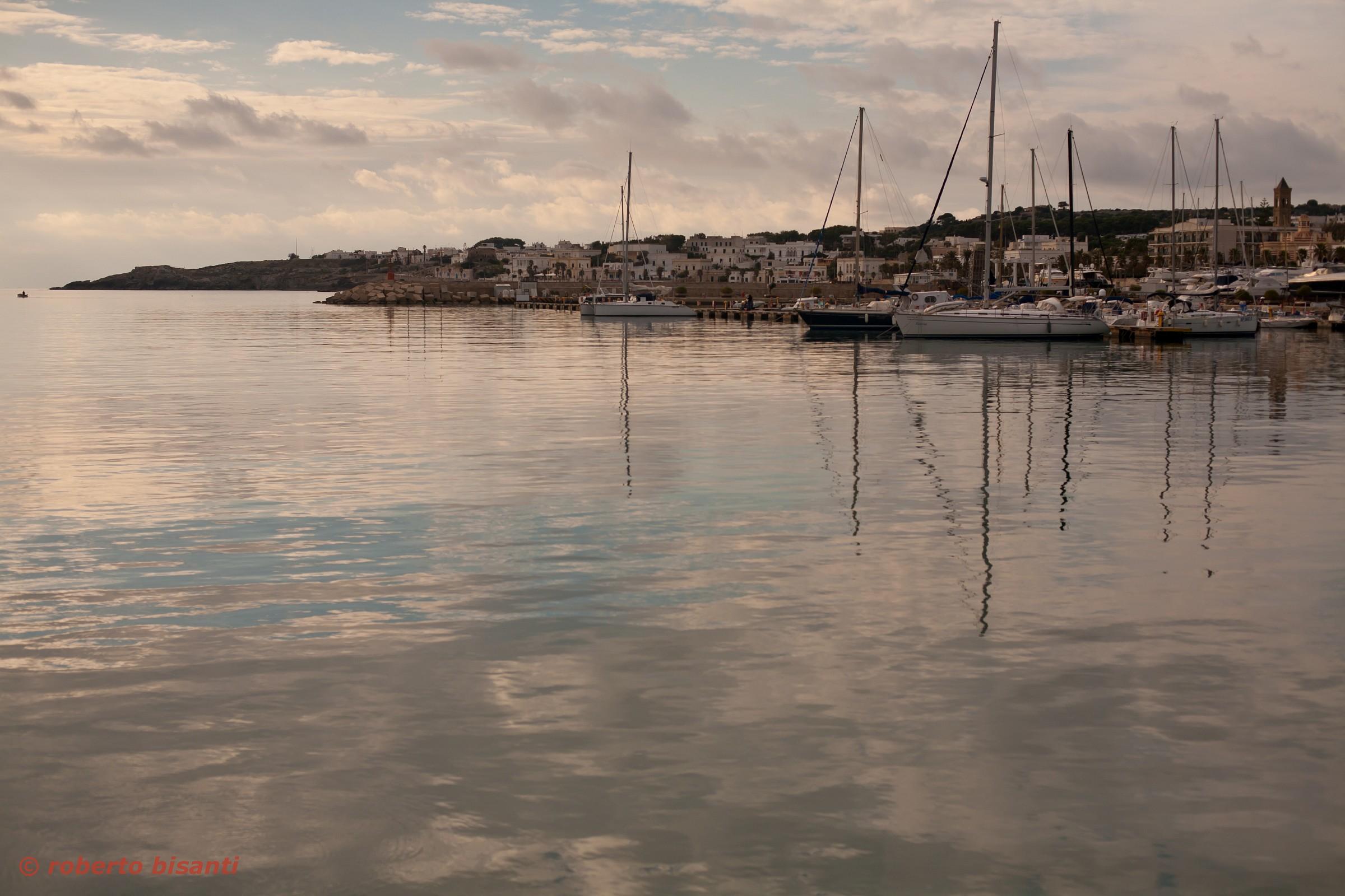 the harbor .......