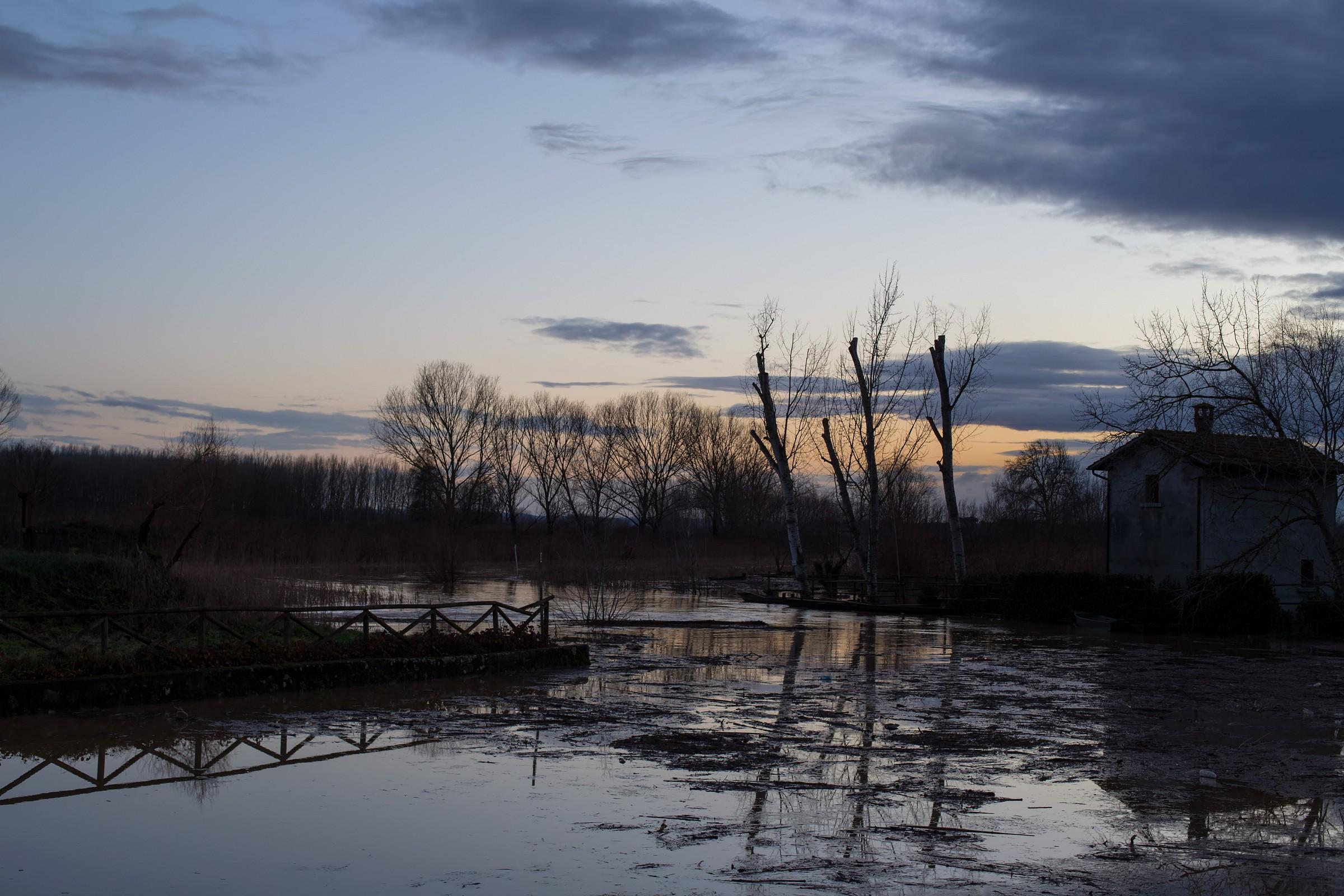 Marsh Submerged...