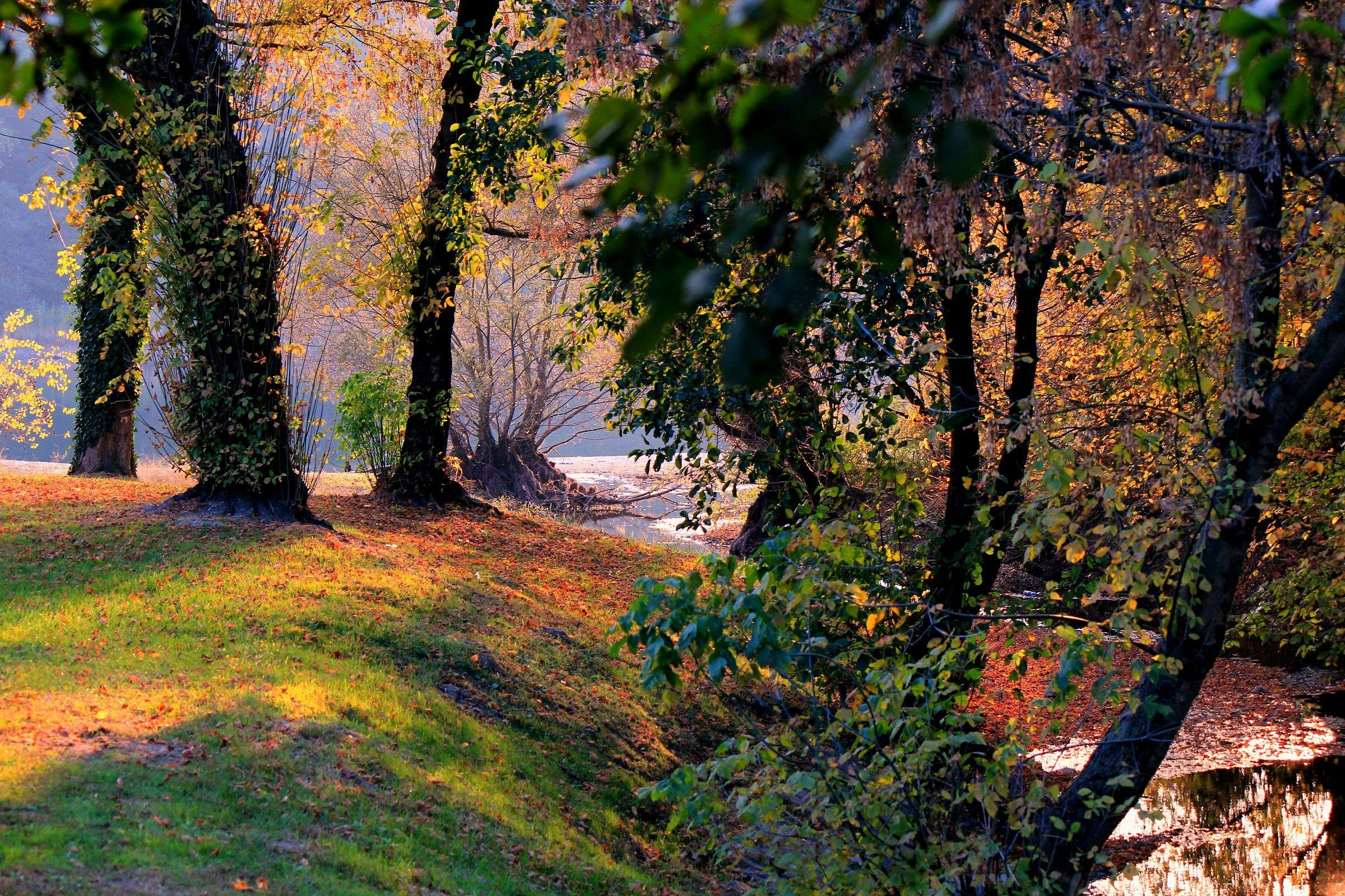 Colori di autunno...