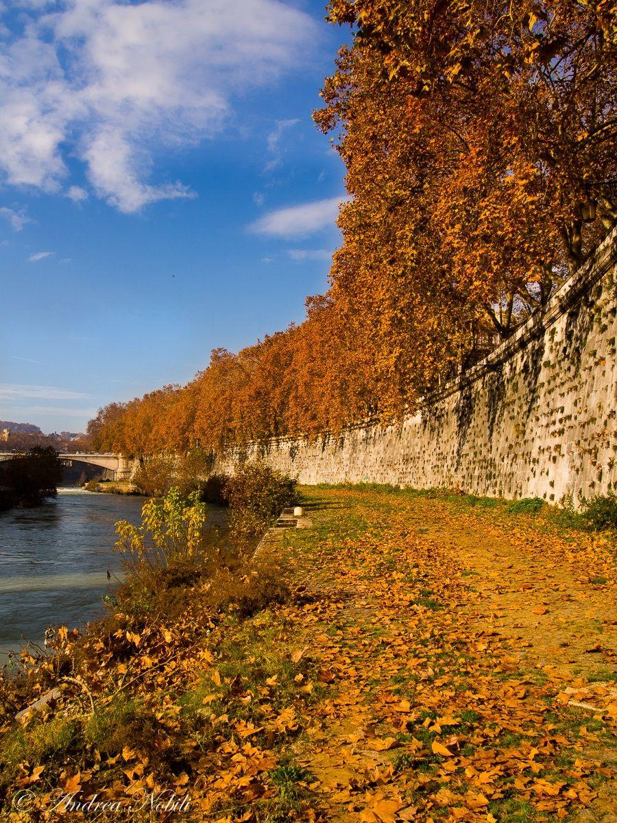 Rome, stroll along the Tiber...
