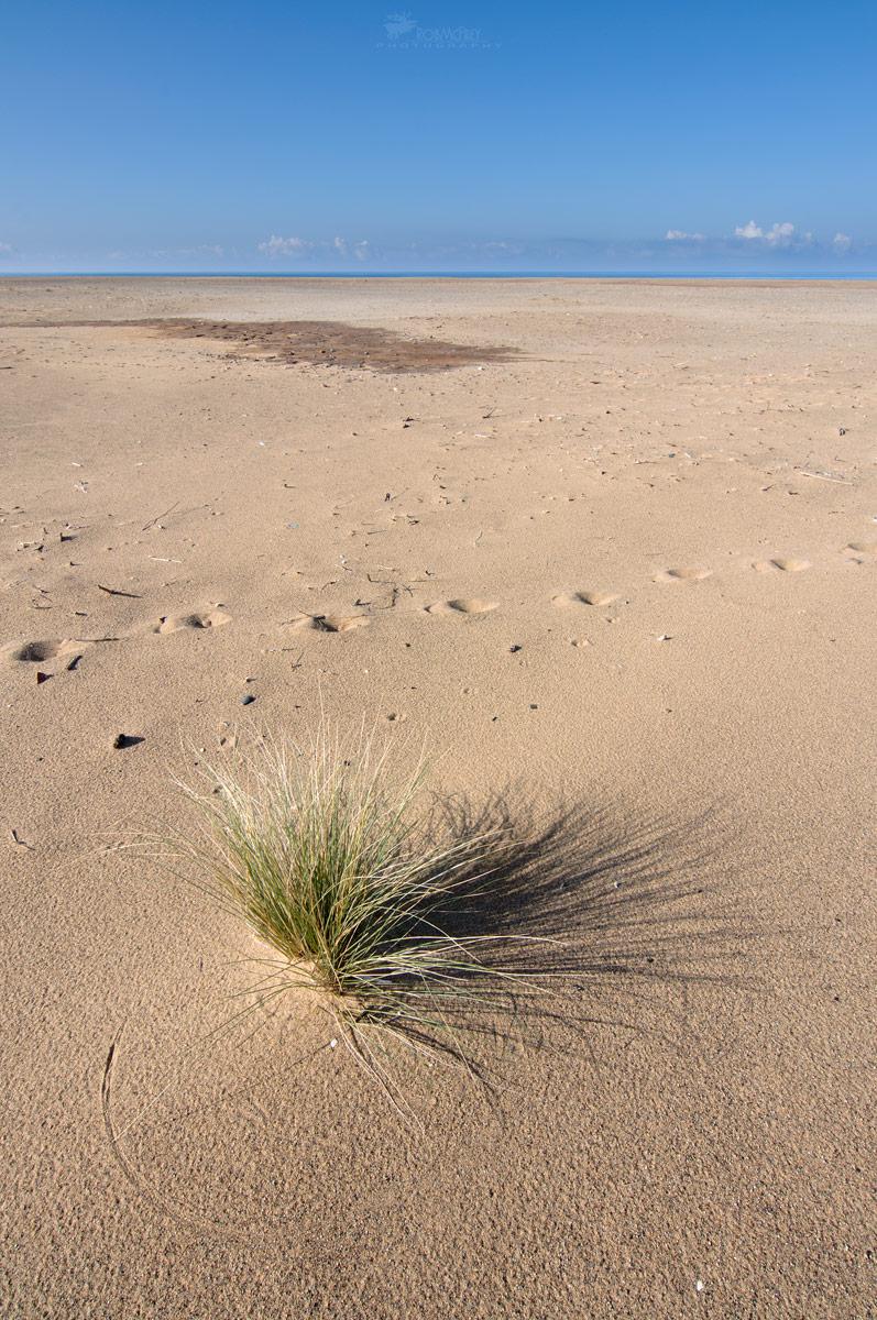 Goniometri naturali -  Deserto di Piscinas - Arbus...
