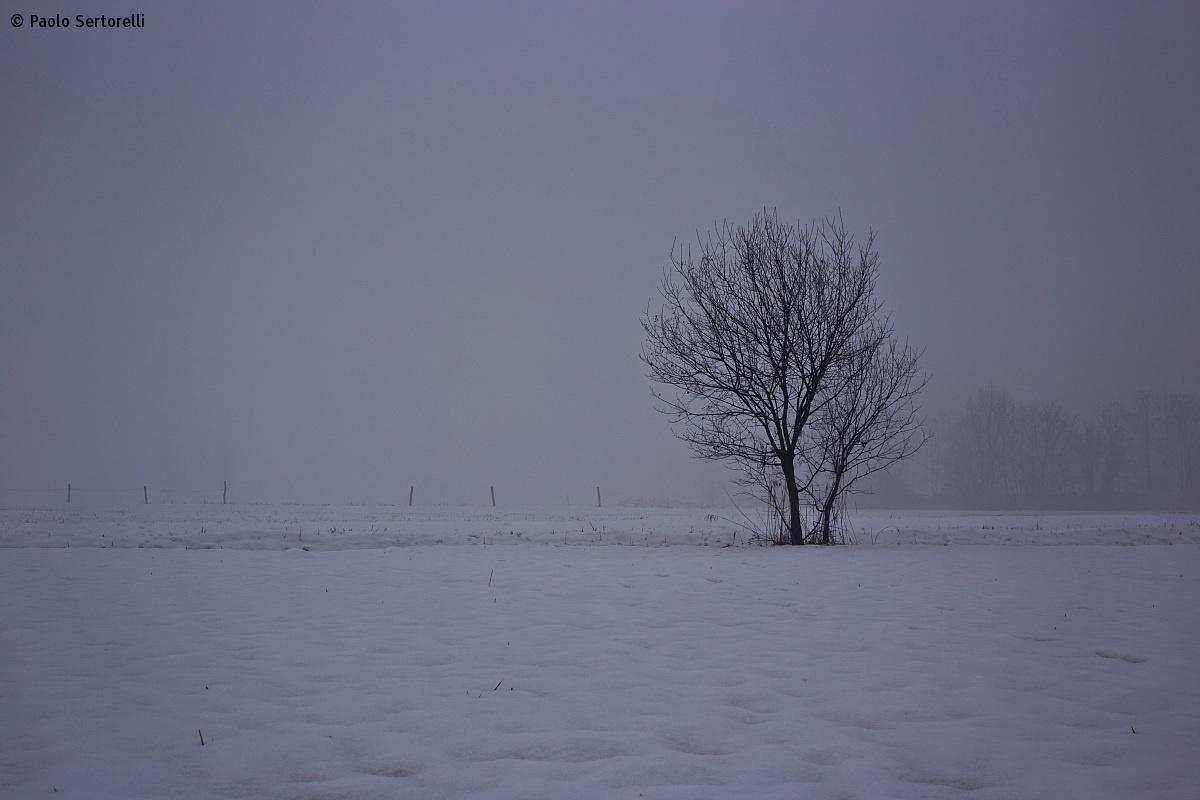 Inverno 04...