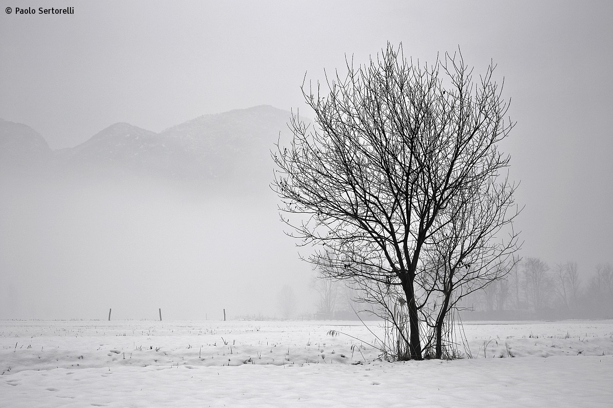 Winter 06...