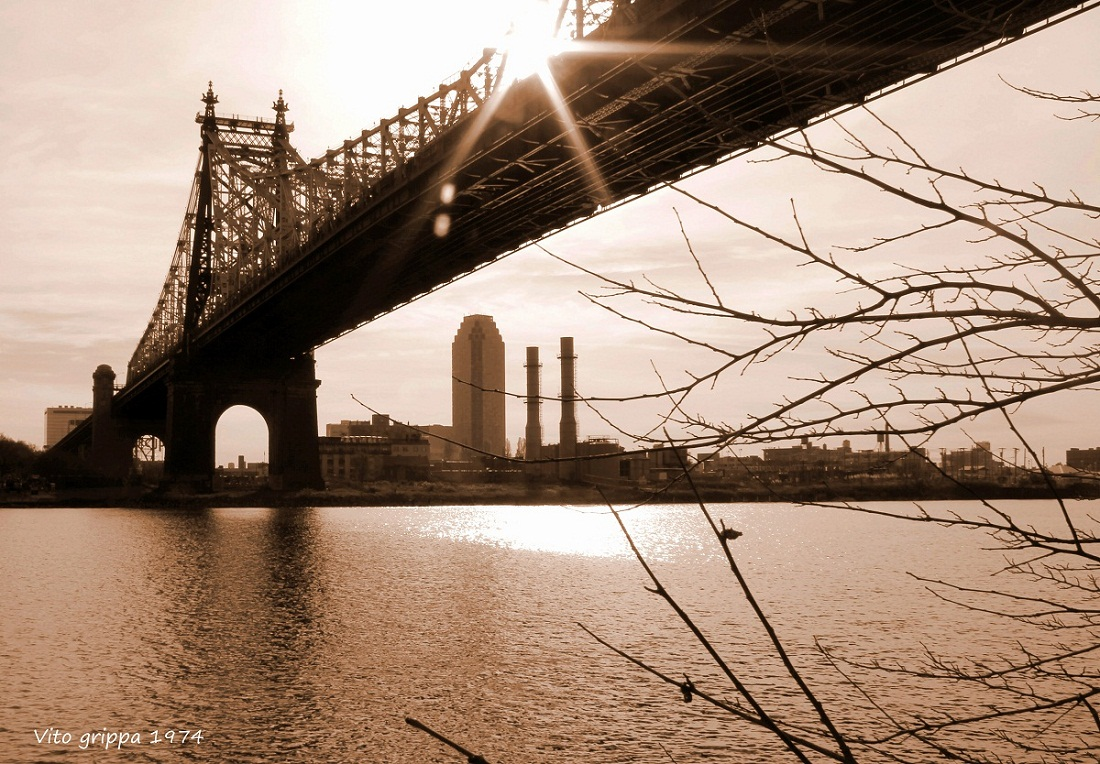 The light over the bridge...