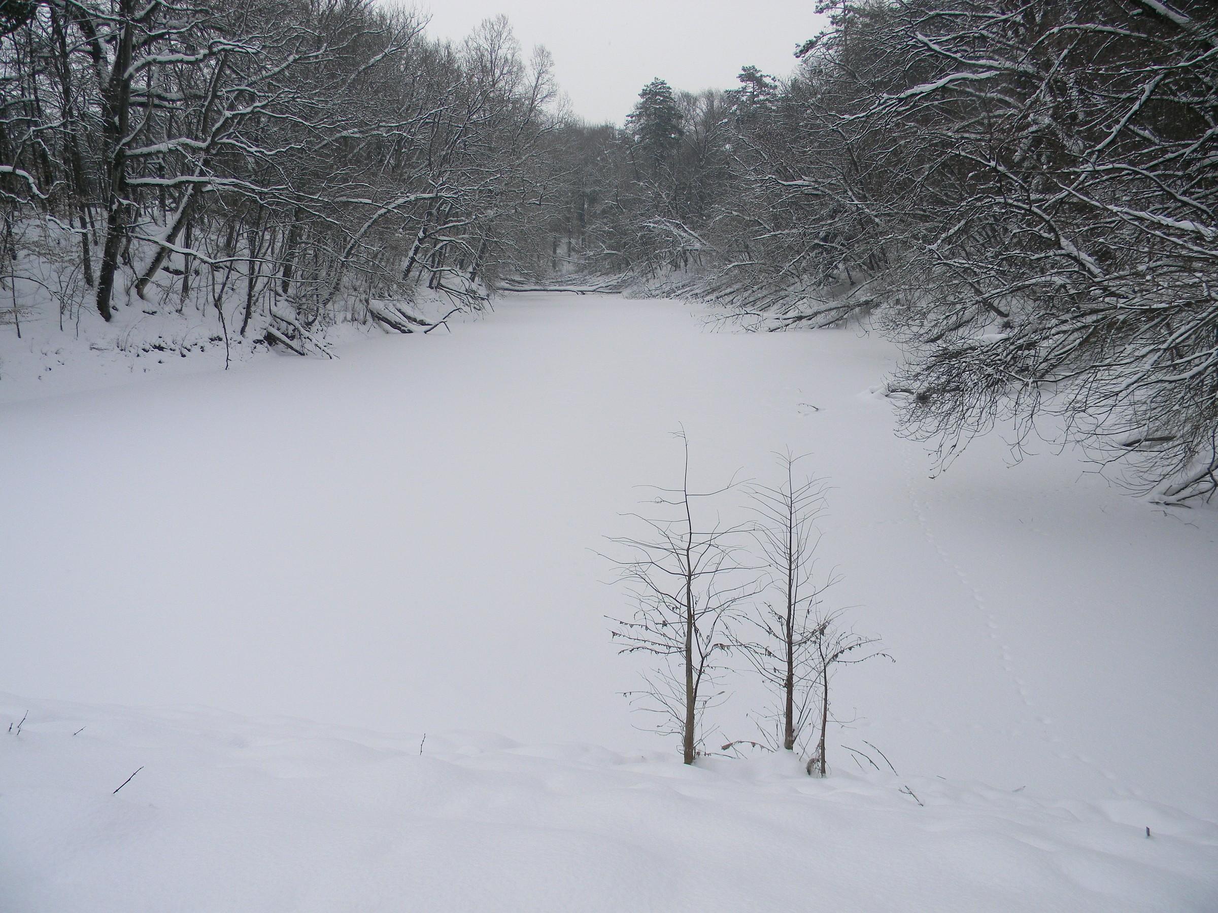 Winter Po (Lake Of Shuttles)...