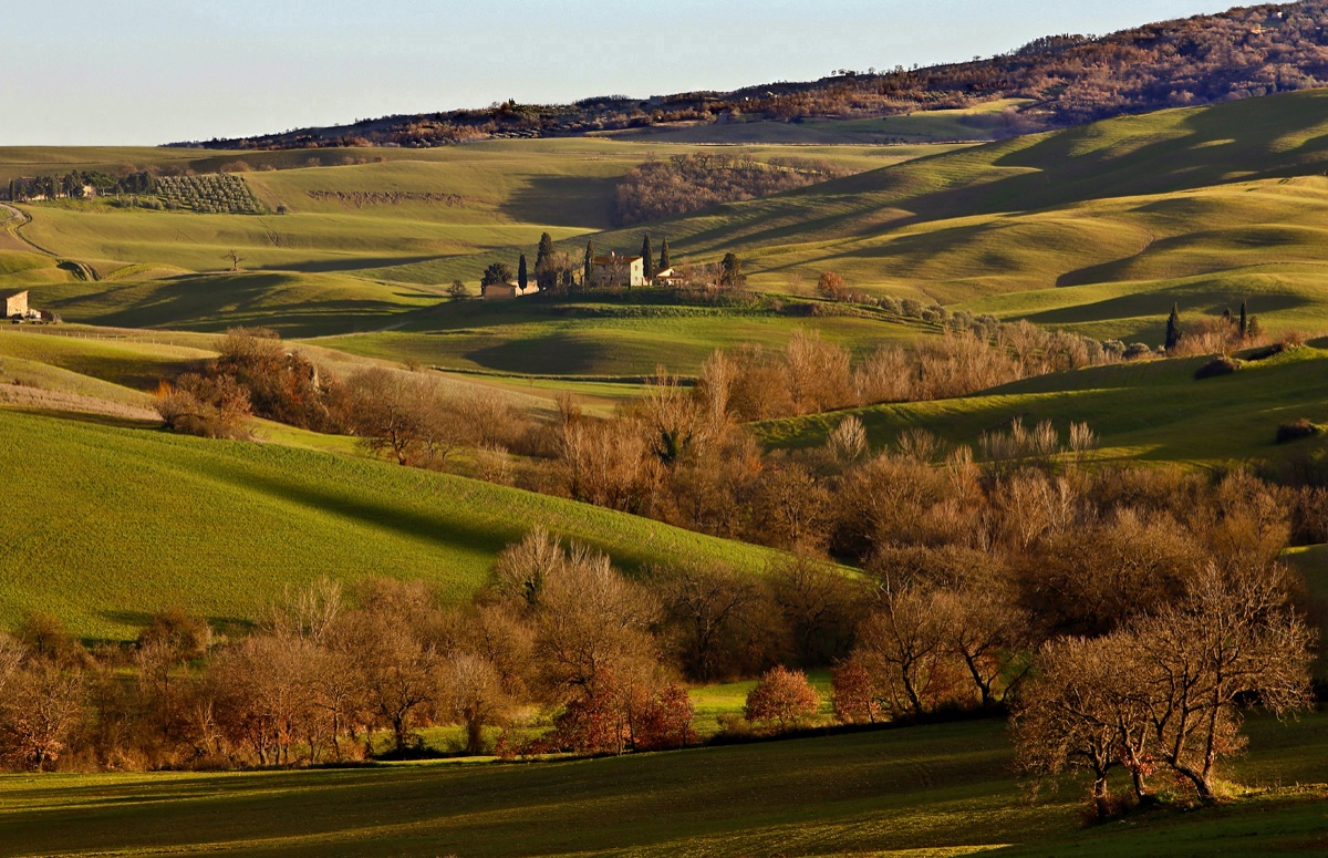 Facing? (Val D'Orcia)...