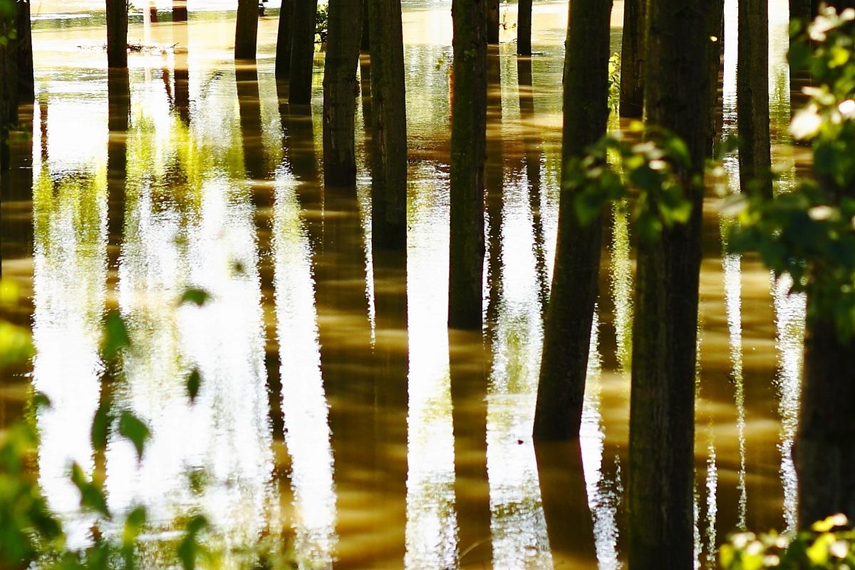 esondazione del fiume Oglio...