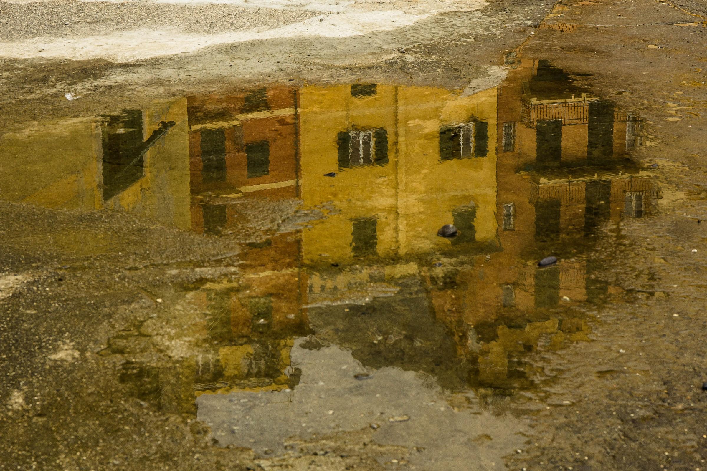 reflected in Camogli...