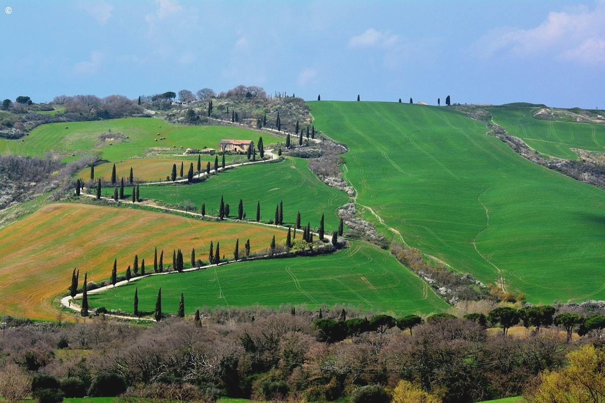 Sinuous Val d'Orcia 2...