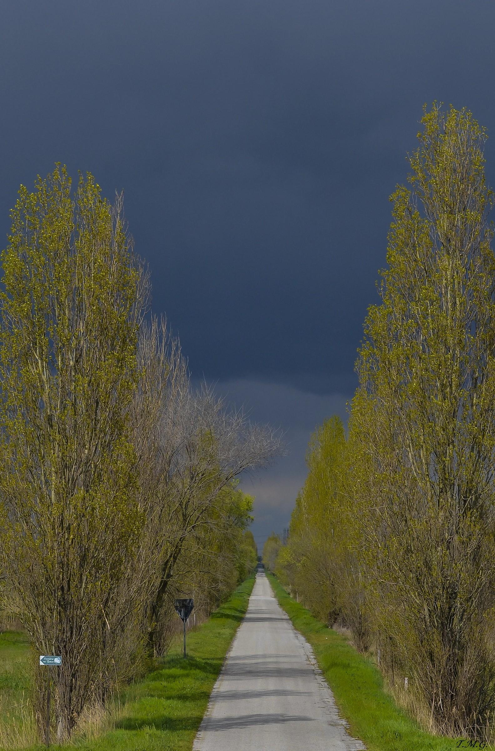 Thunder Down the Lane...