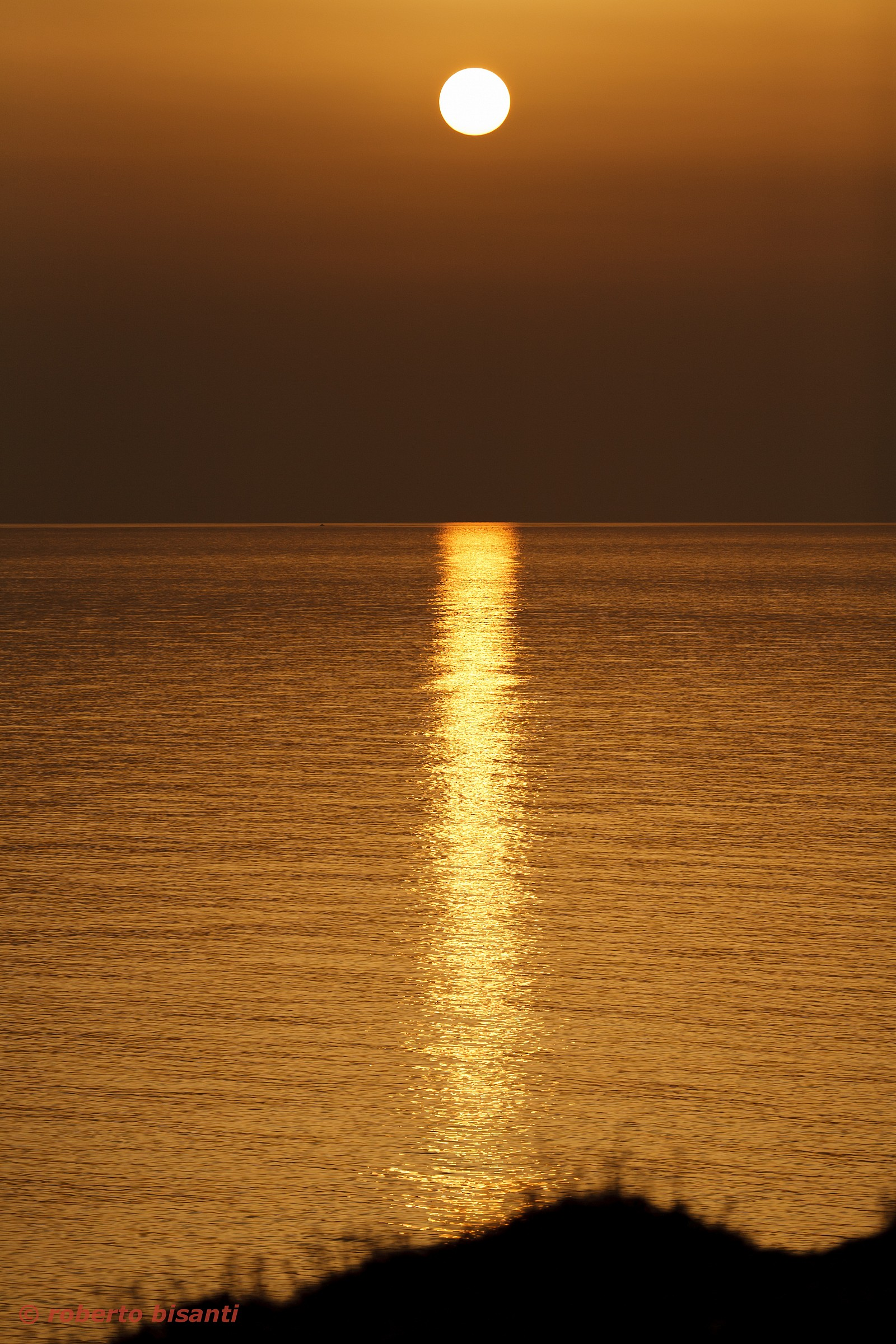 the gold of Salento .......