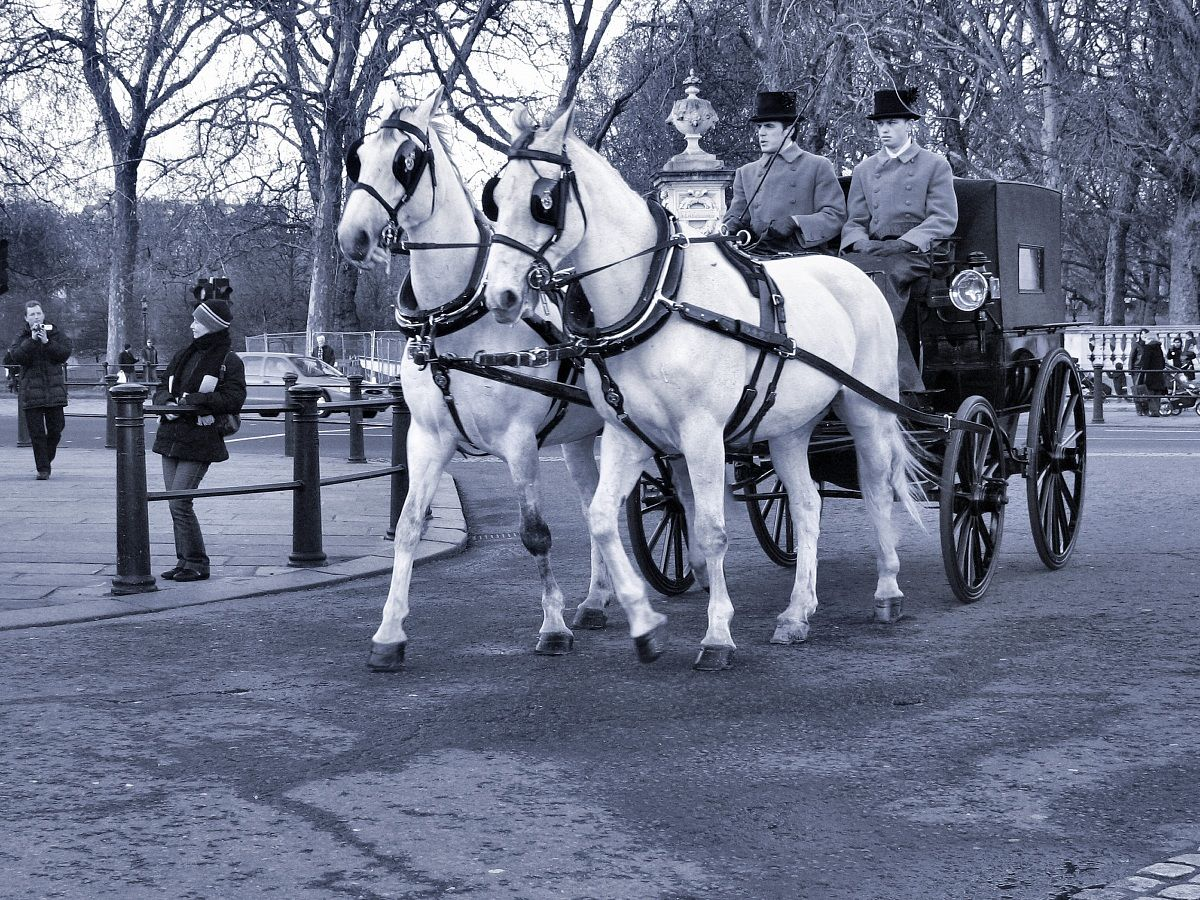 London 2008. Carriage of Her Majesty...