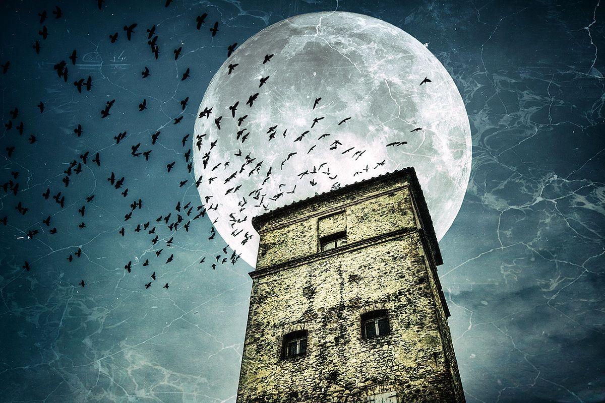 attrazione lunare...