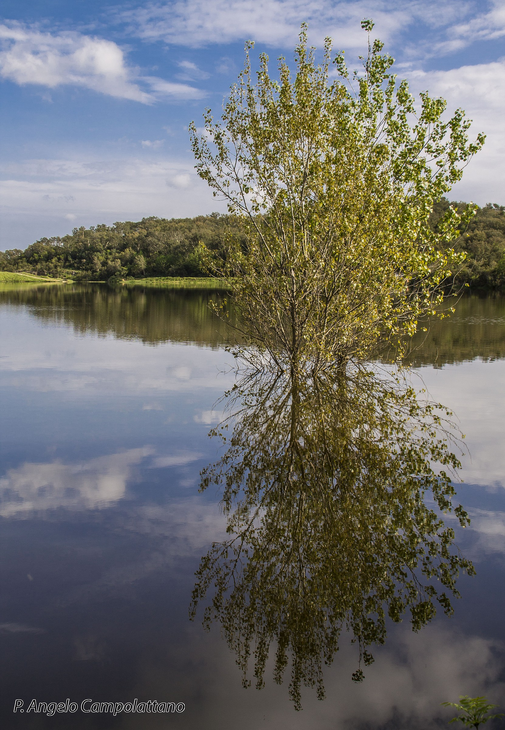 Reflections in Maremma...