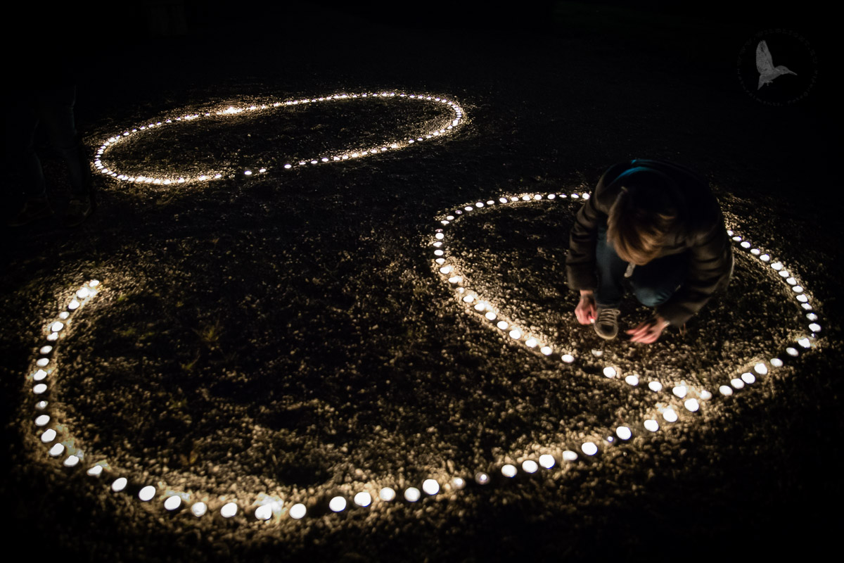 Earth Hour: The time of the earth...