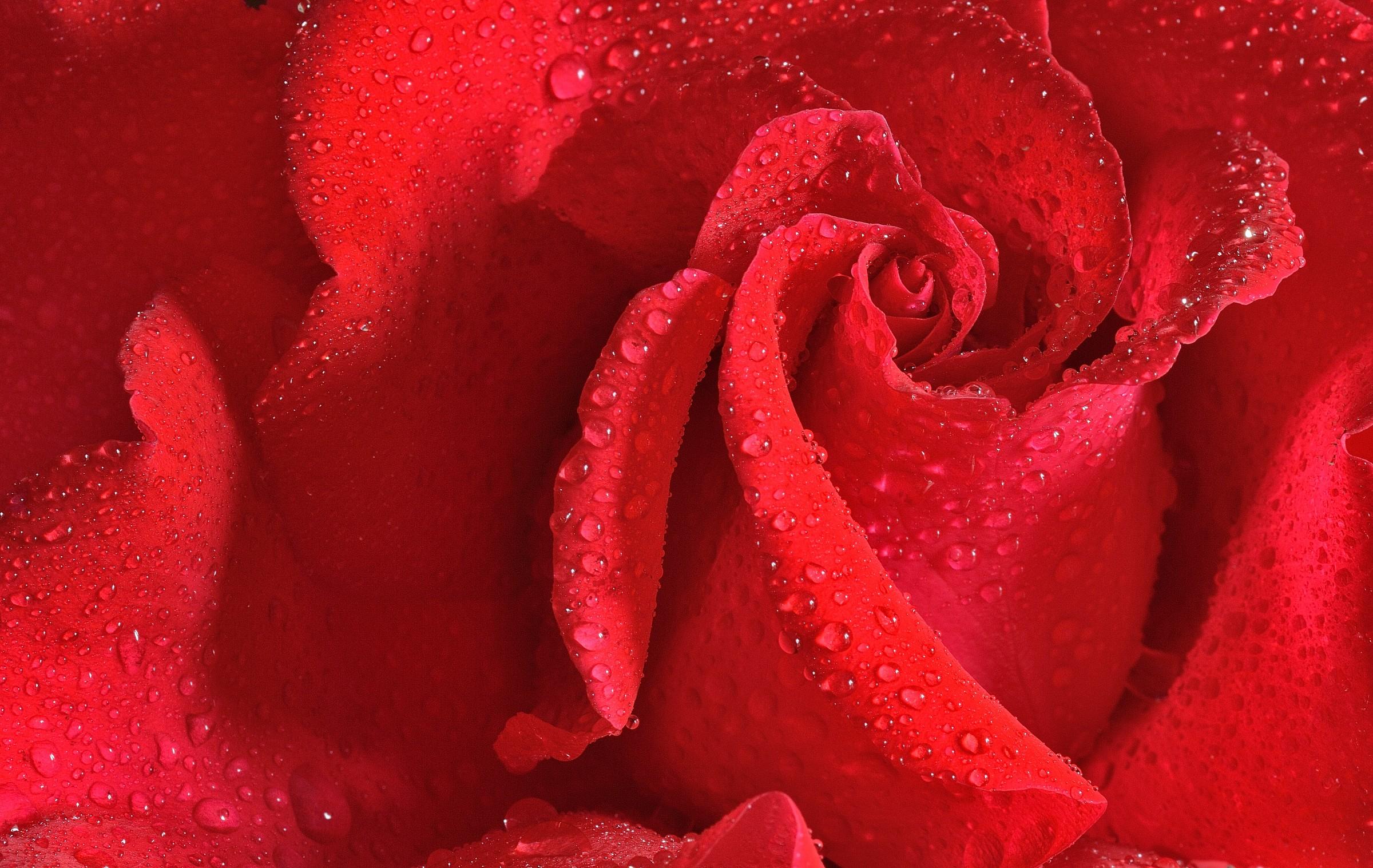 wet pink...