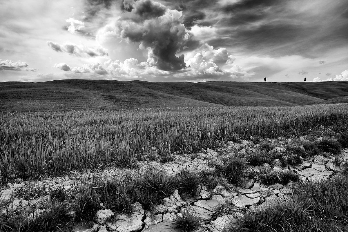 In Val D'orcia...