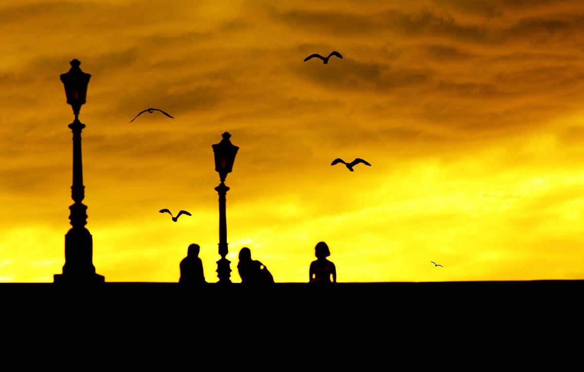 Sunset silhouette...