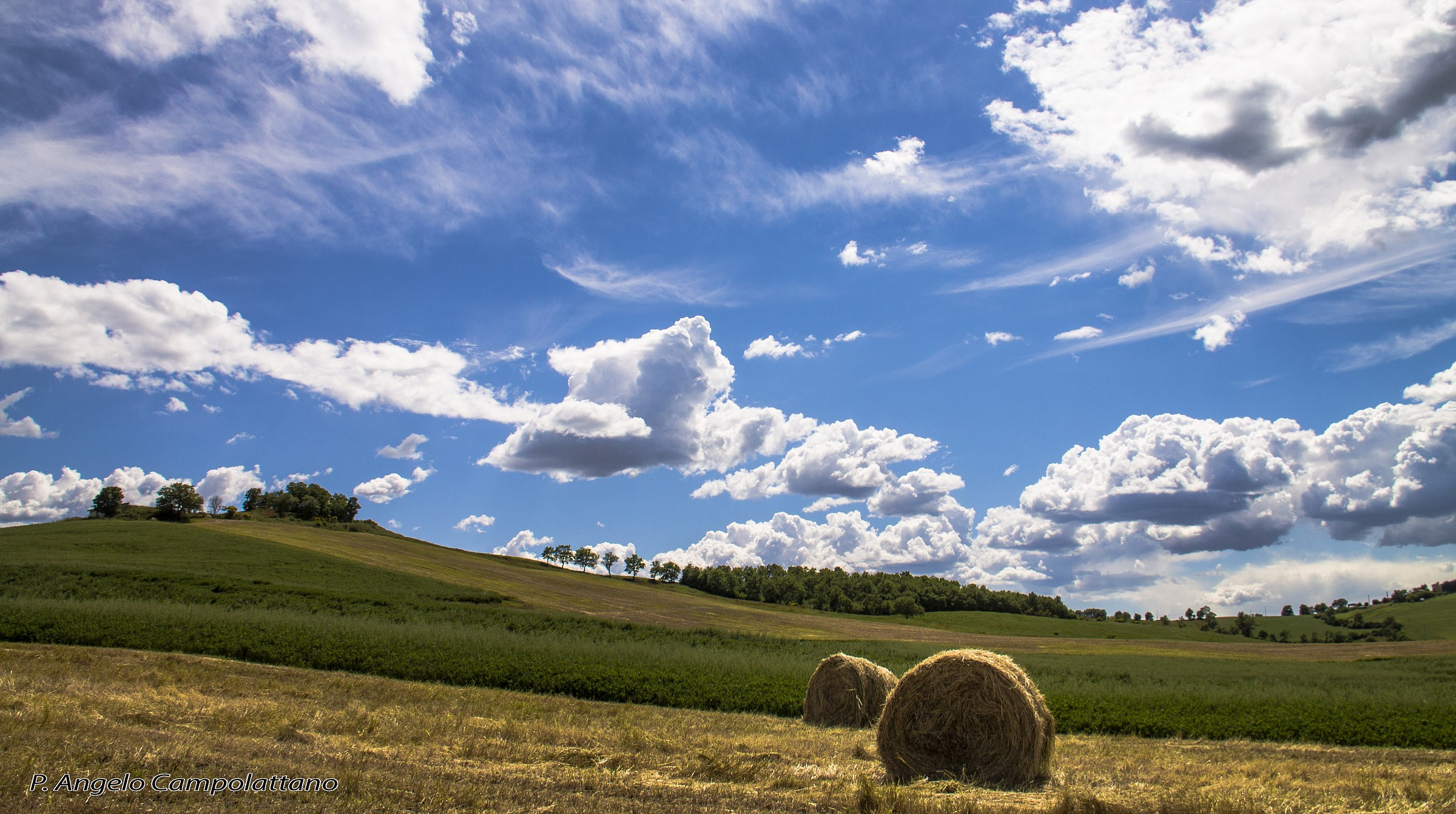 Hay Harvest...