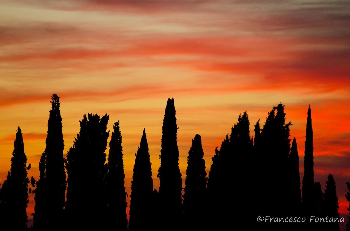 Rosso di sera............