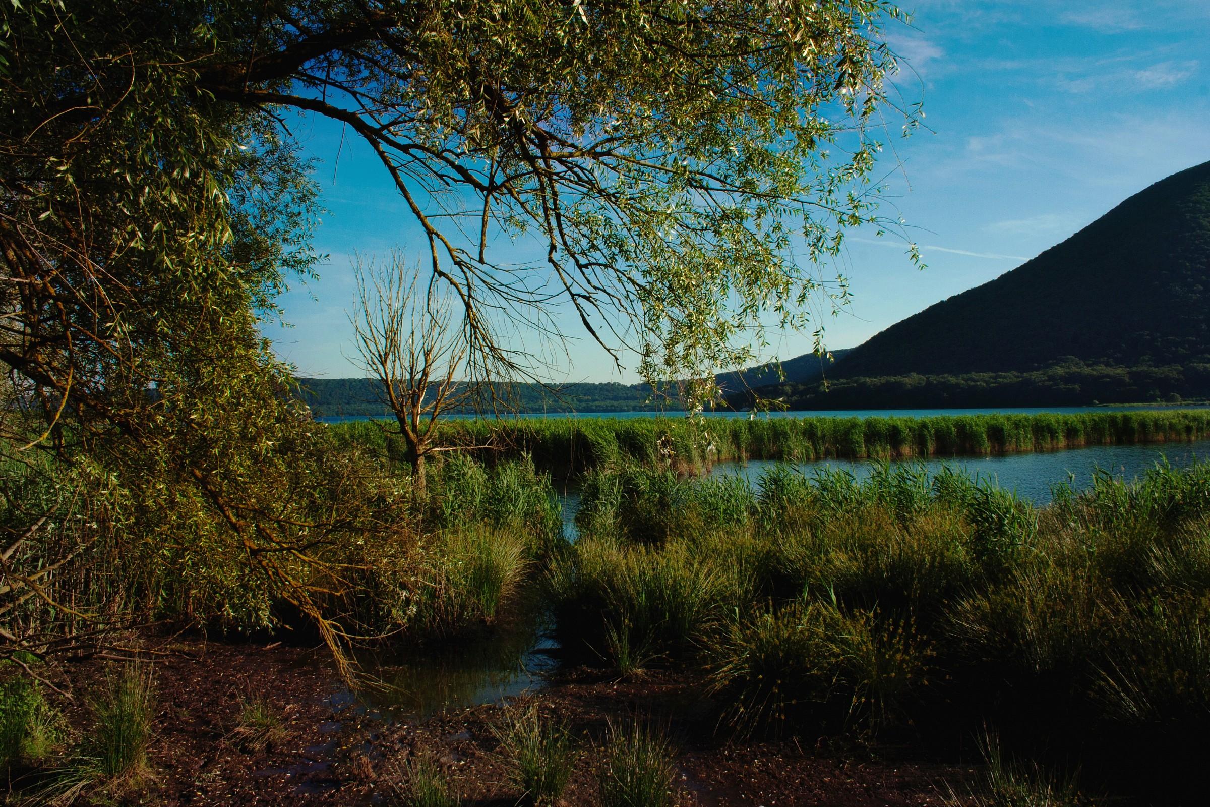 lagoon of Lake Vico...