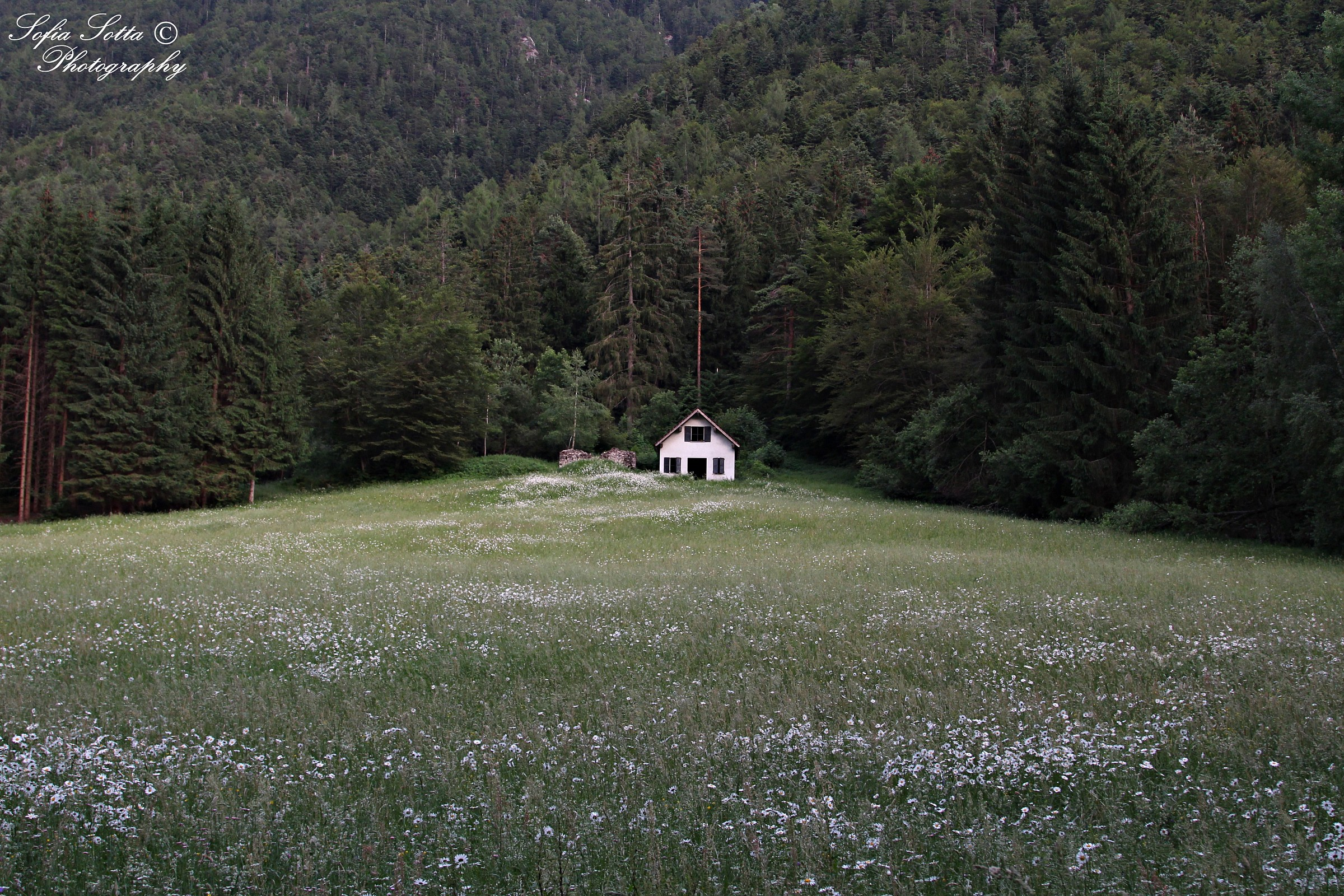 Little house...