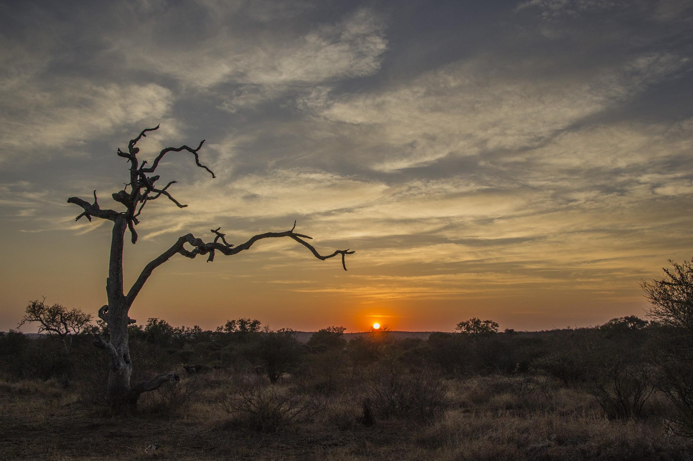 Kruger NP - Sunrise...
