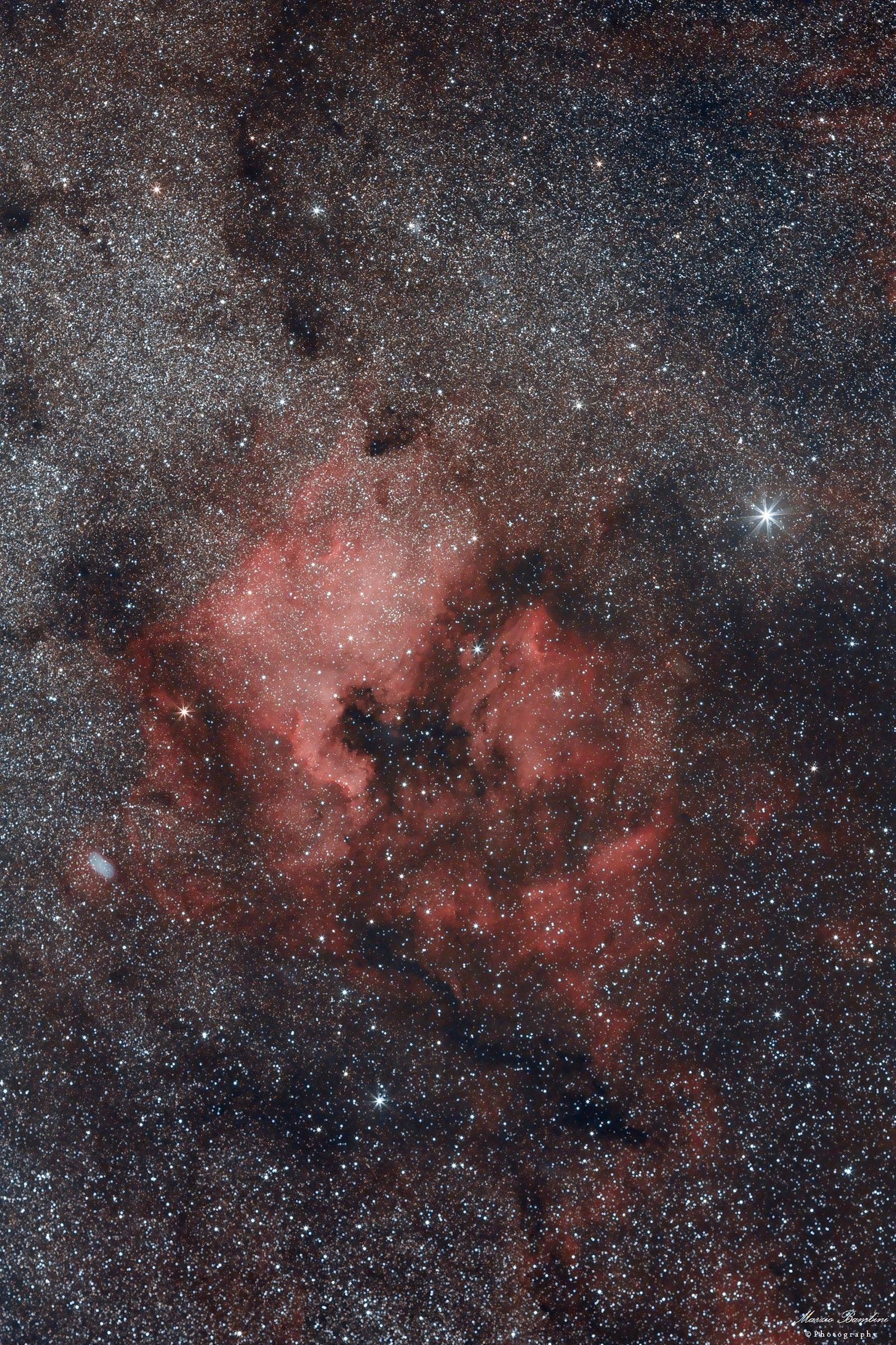 North America and Pelican Nebulae...