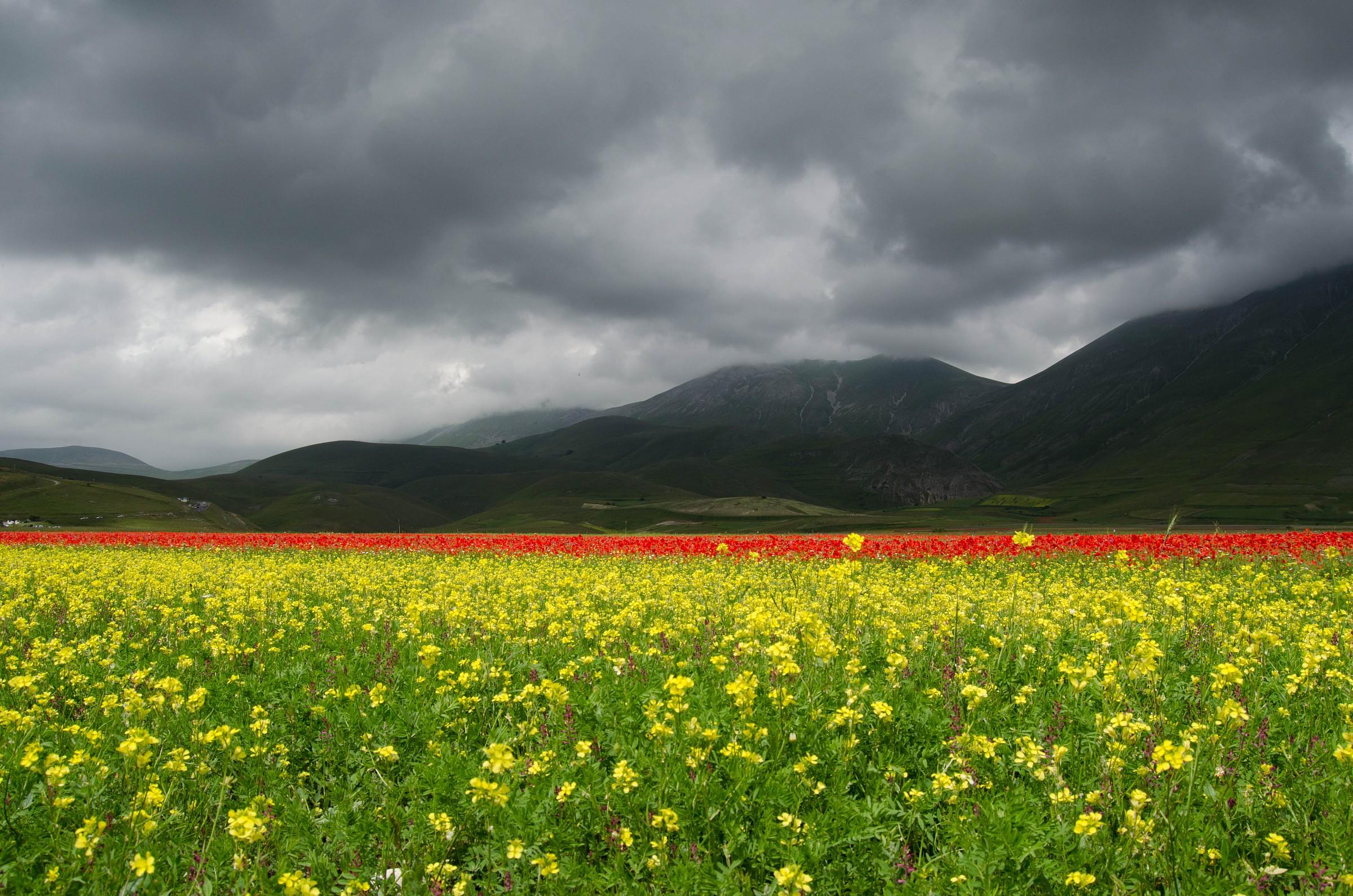 The Plains of Castelluccio...