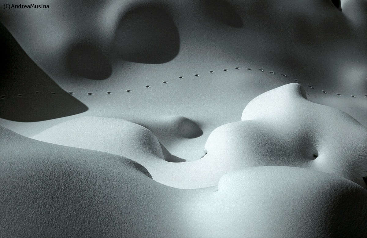 Footprints in the Snow...