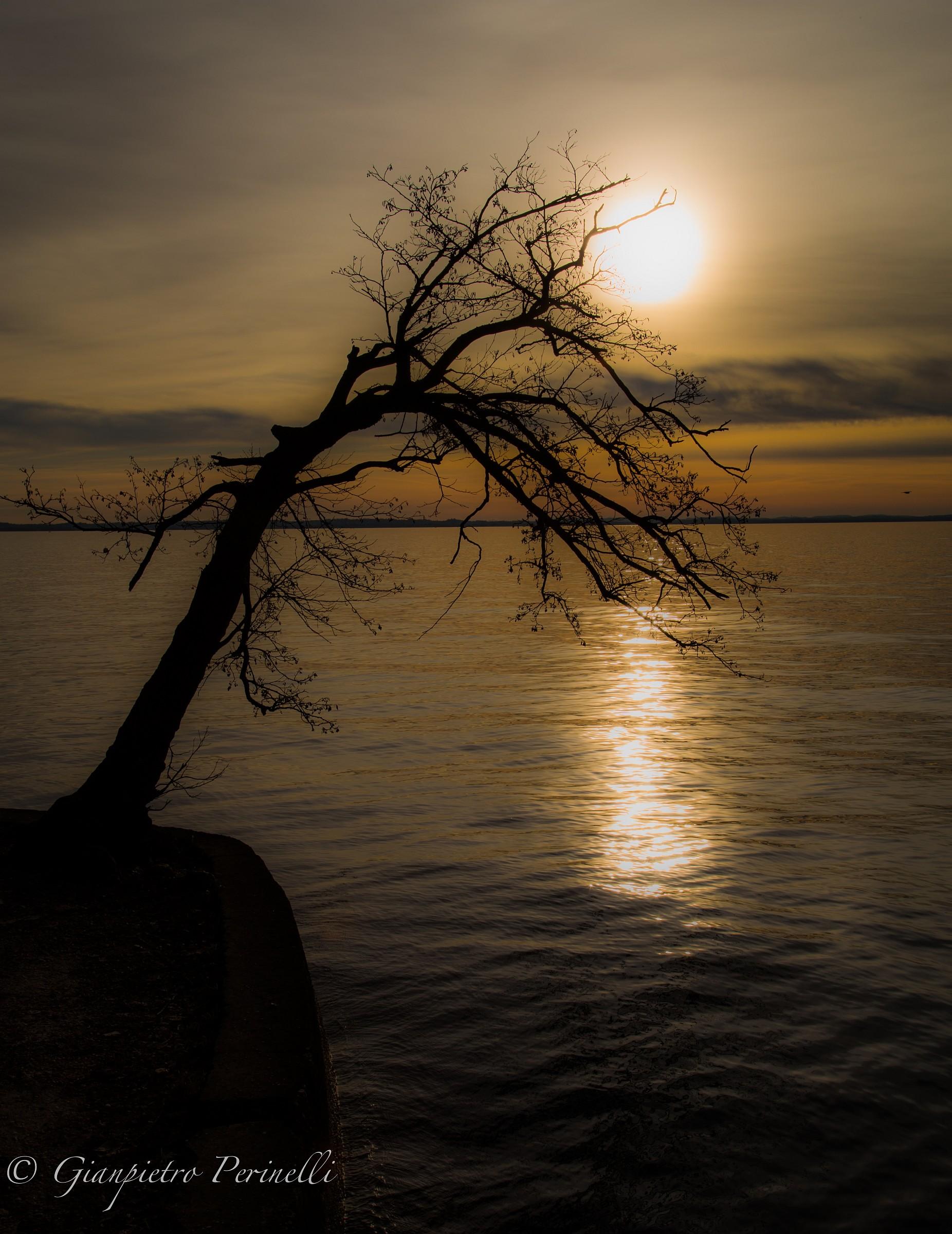 L'ultimo sole...