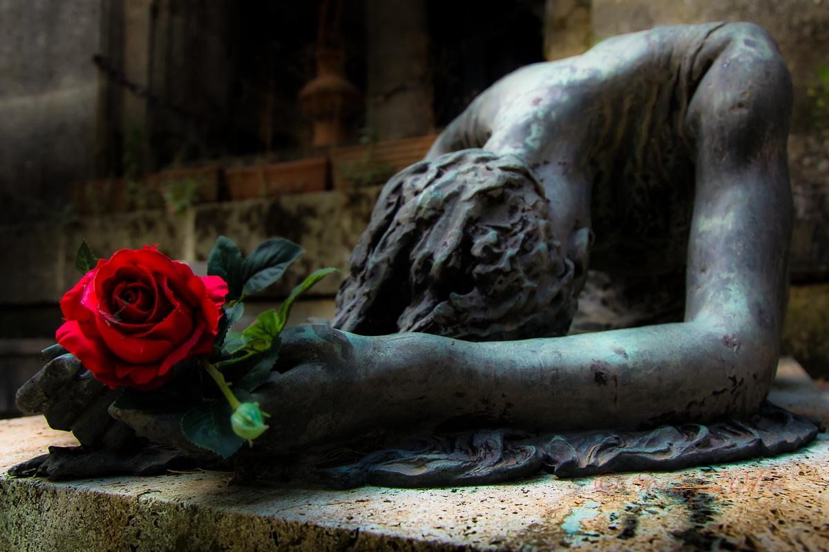 La Rosa...