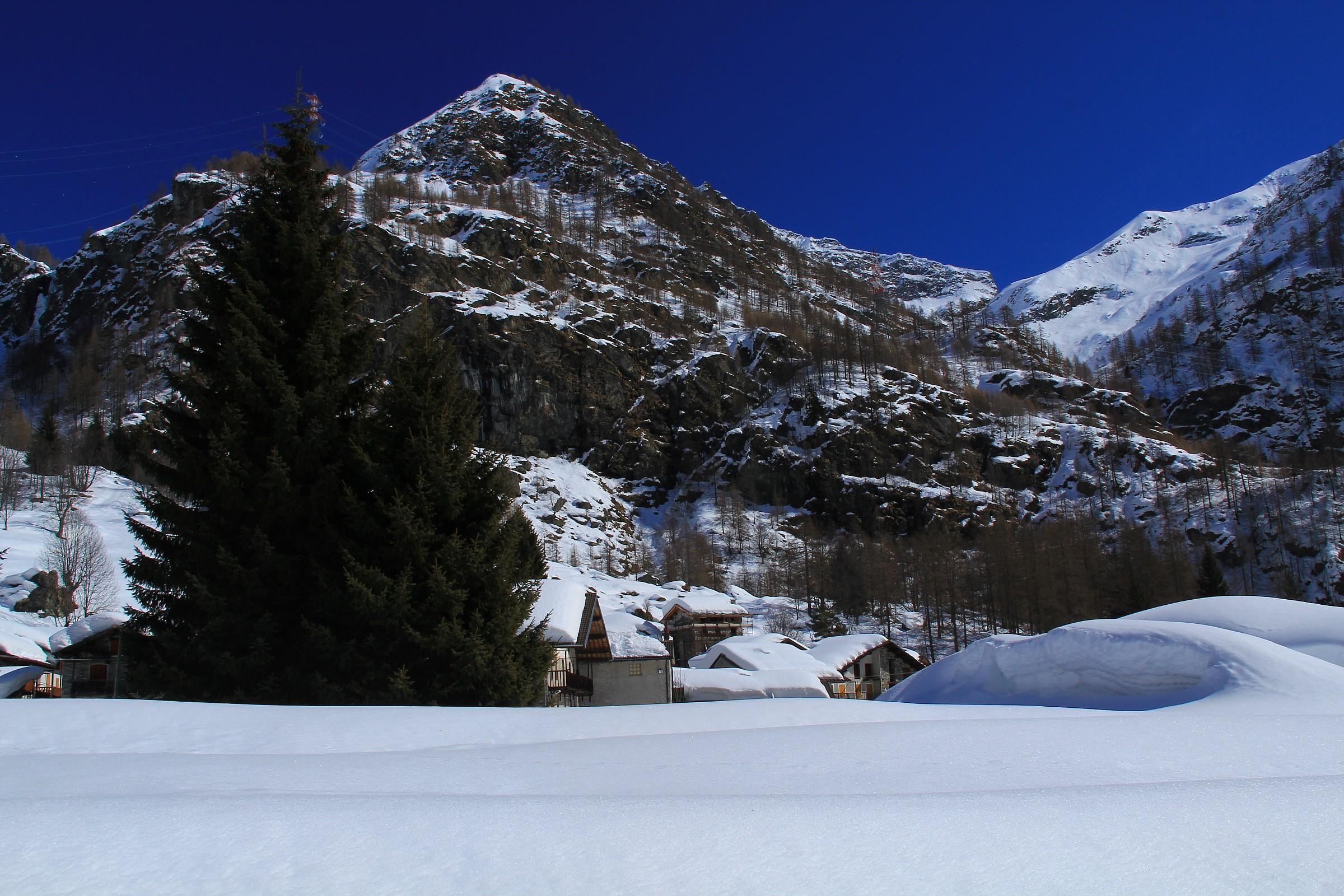 Winter Piamprato...