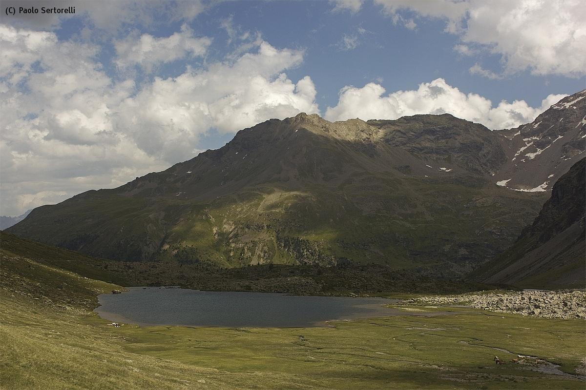 Lago di Val Viola...