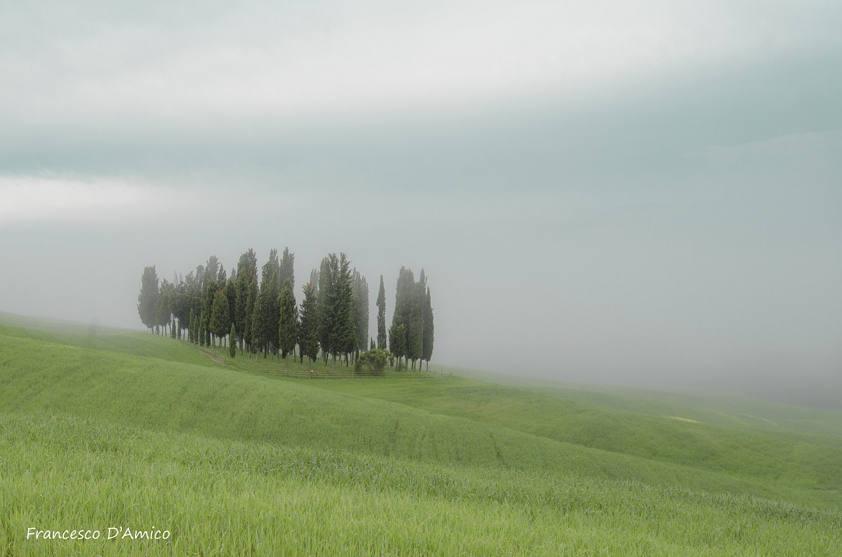 The cypresses of San Chirico d'Orcia...