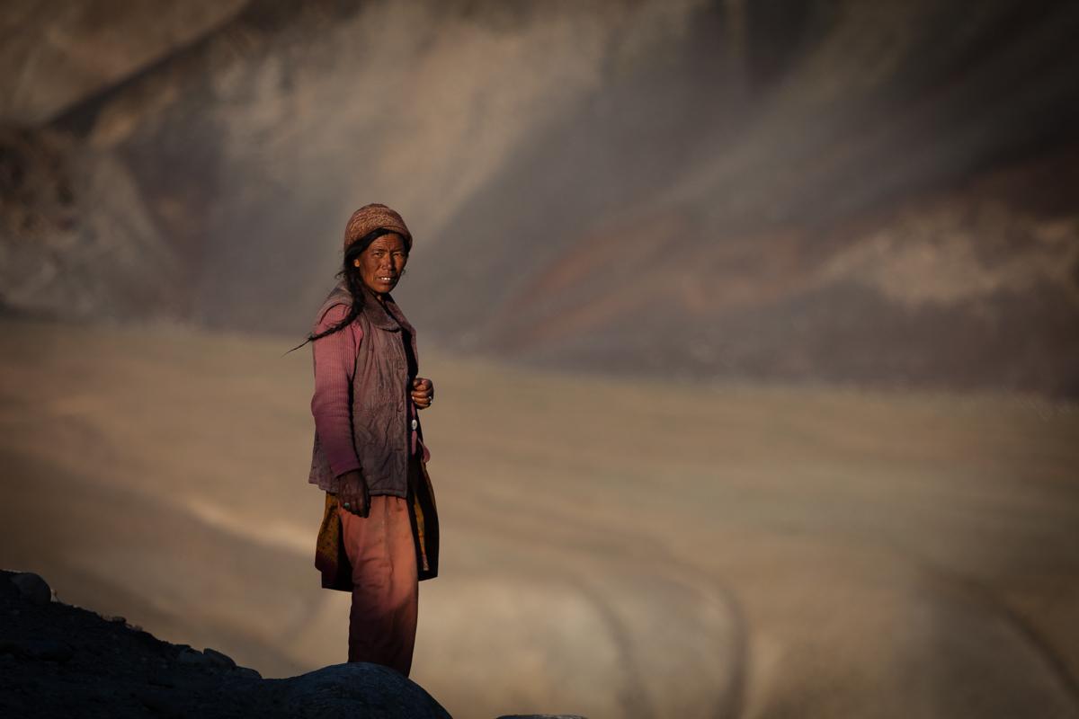 waiting for the flocks (Valley zanskar - ladakh)...