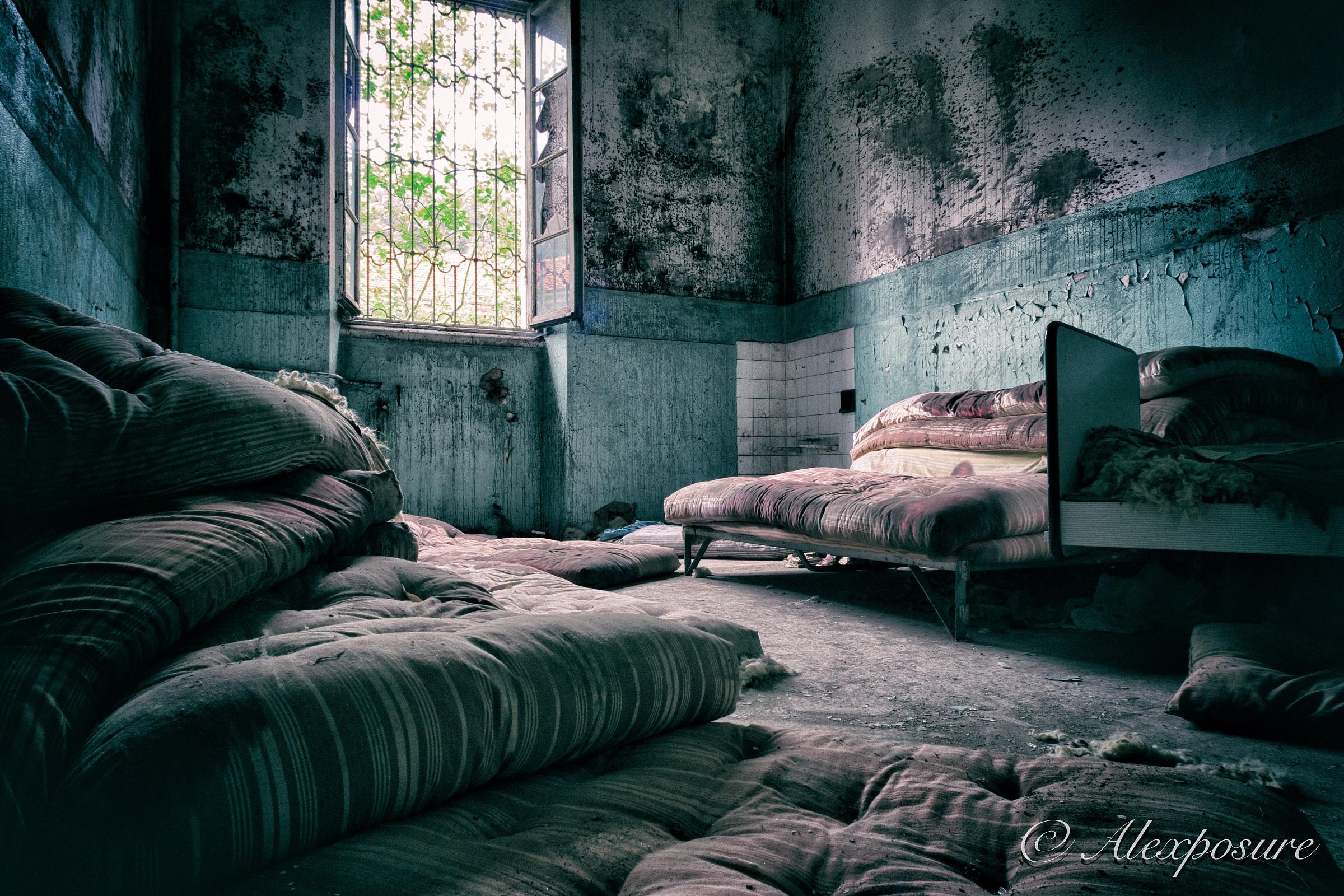 The room mattresses...